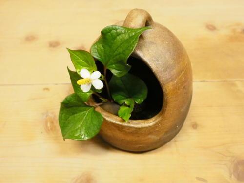 陶房 つばき (須賀明)